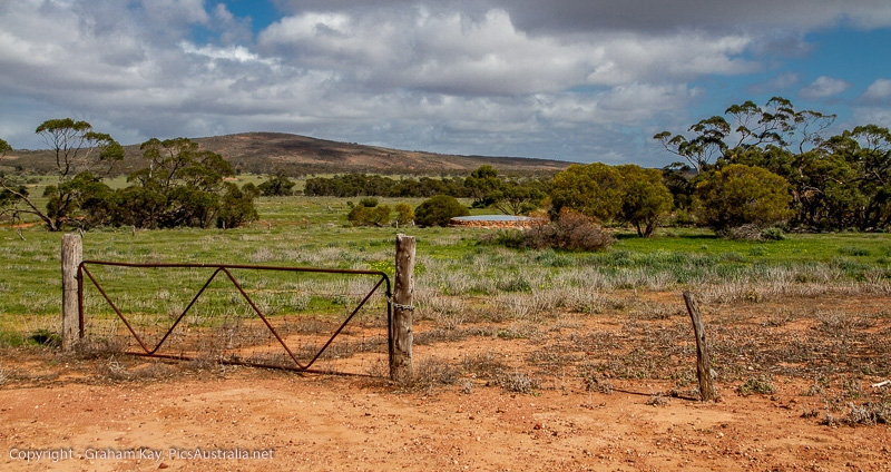 View from Old Paney Homestead - Gawler ranges NP