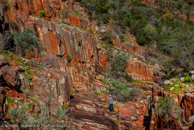 Organ Pipes - Gawler Ranges NP