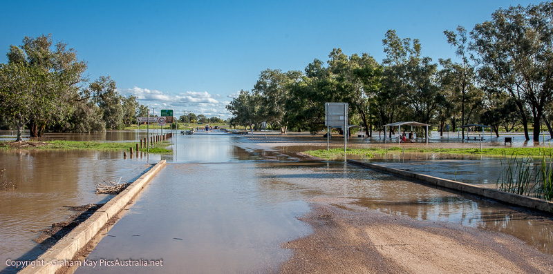 Barcoo River in Flood - Blackall